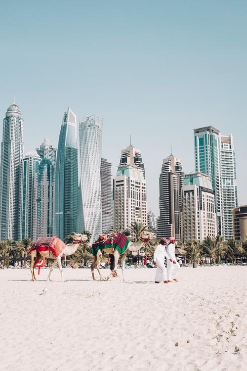 Picnic on the Beaches on Dubai New Year's Eve