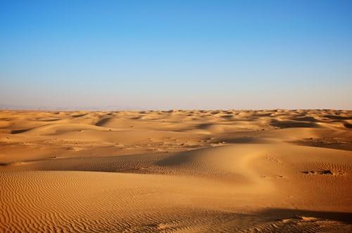 Traditional Celebrations on Desert Safari