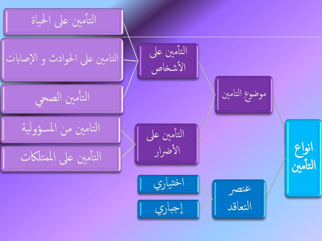 تعرف على أنواع التأمين الذي تقدمه الشركات لتحصل على أفضل شركة تأمين سيارات في الإمارات