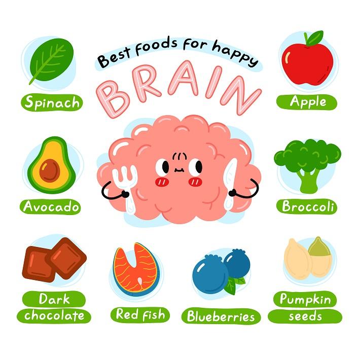 النظام الغذائي الصحي للدماغ
