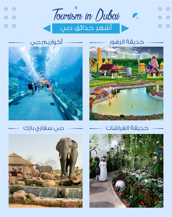 السياجة في دبي وأشهر الحدائق